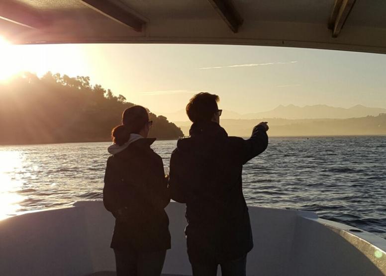 Knysna Sunset Cruise image 4