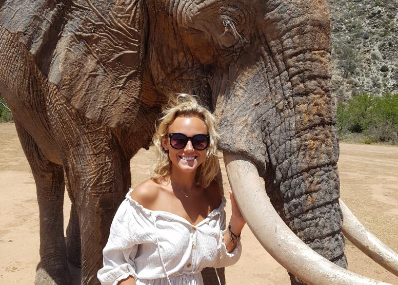 ELEPHANT INTERACTION image 1