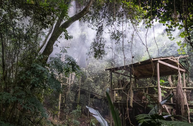 Monkeyland, Birds of Eden & Jukani Sanctuary Single Ticket (Visit one our award winning sanctuaries) image 6