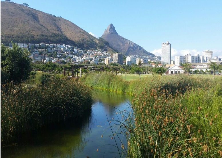 Cape Town City Cycle - Private Tours image 6
