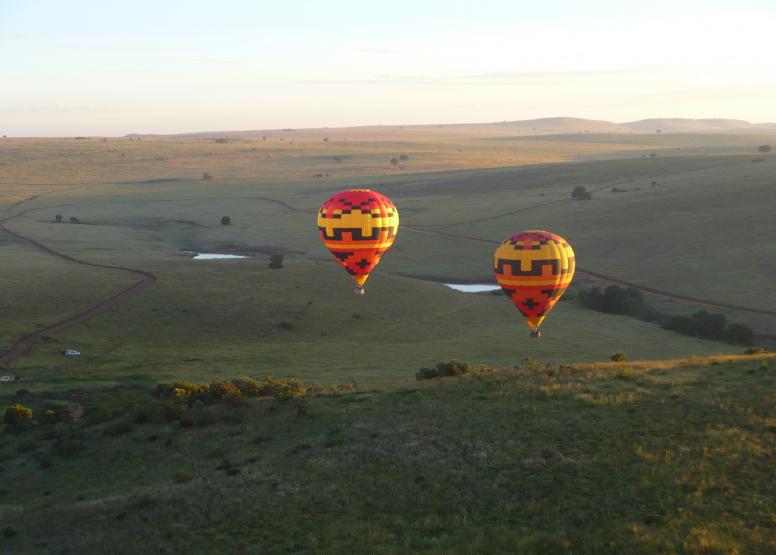 Safari Flight image 4