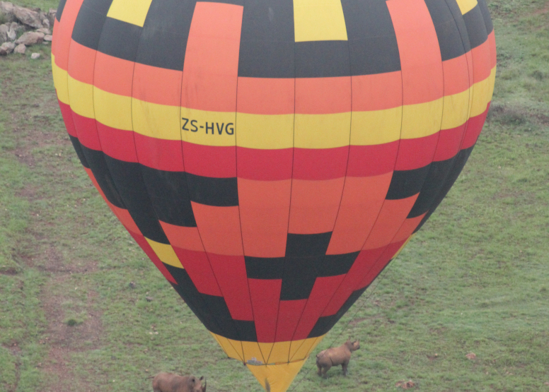 Safari Flight image 8