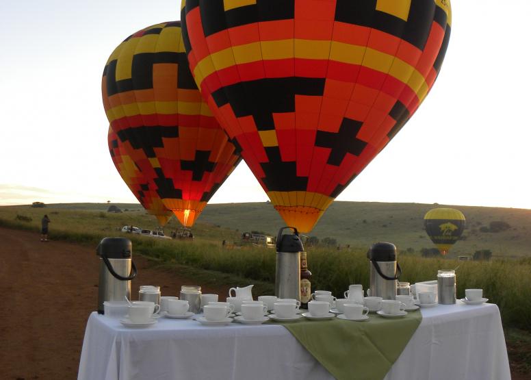 Safari Flight image 10