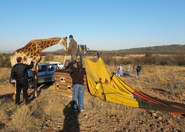 Exclusive Hot Air Ballooning Safari Flight for Two image 4