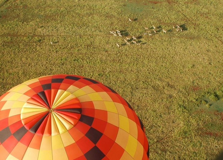 Exclusive Hot Air Ballooning Safari Flight for Two image 6
