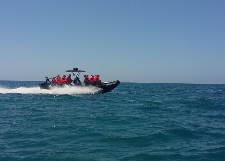 Fearless Speedboat image 2