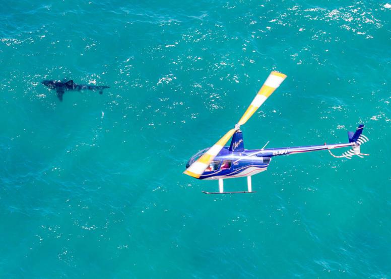 30 min Coastal flight to Glentana image 6