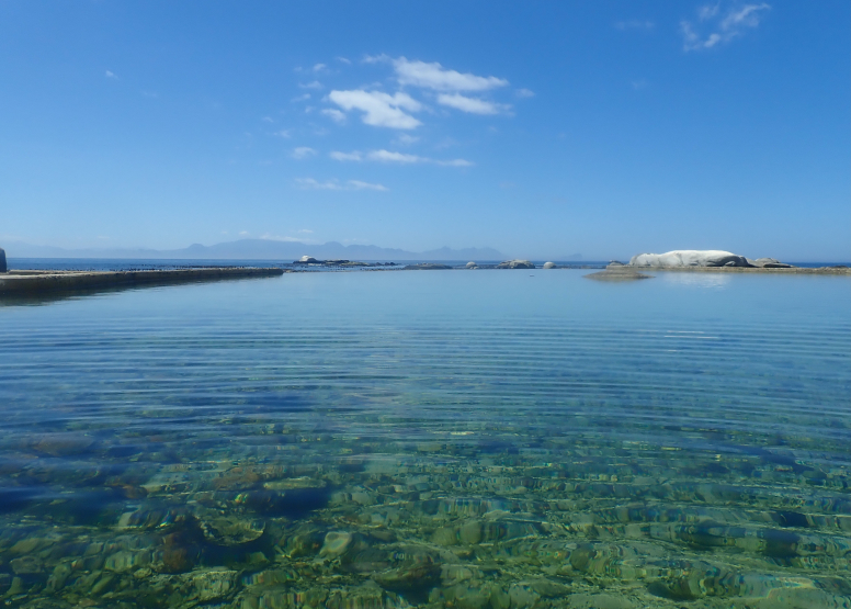 Snorkel Cape Town's Stunning Tidal Pools image 3